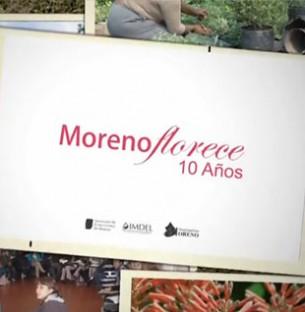 """Intro, zócalos, y recorridos visuales para una producción audiovisual presentada en la feria de floricultura """"Moreno Florece""""."""